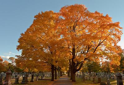 Cemetery Autumn